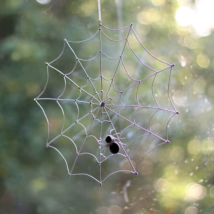 Black Spider with Silver Web